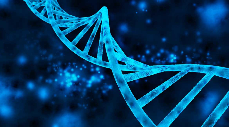 Ко смо ми заправо? Које нам је порекло, чије гене носимо?